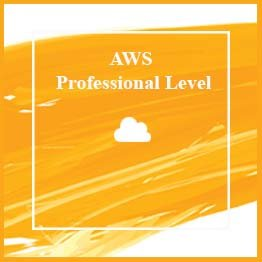 AWS Professional Level - AWS Solution Architect